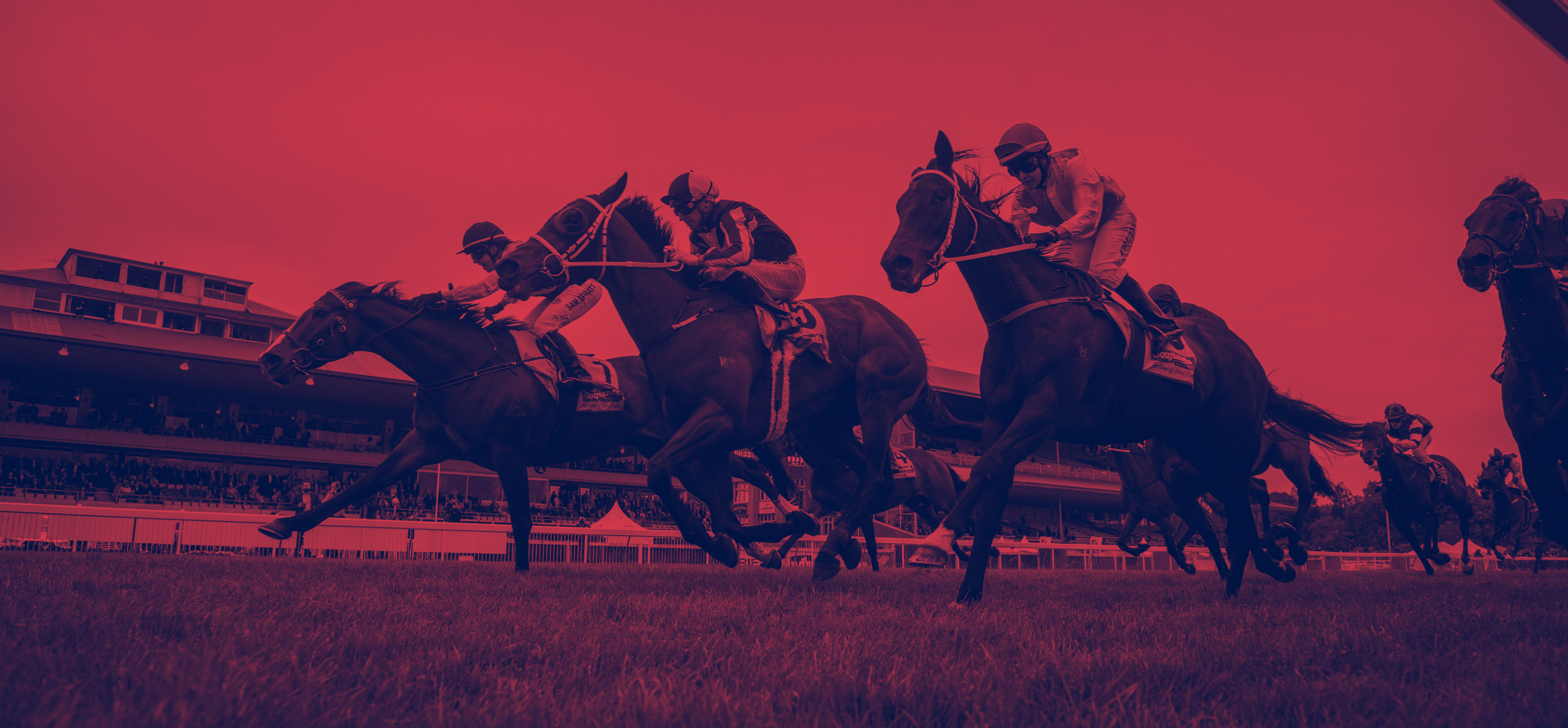 Tab online betting melbourne cup double chance betting formation